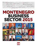 montenegro-business-sector-2015