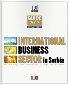 international-business-sector-2013