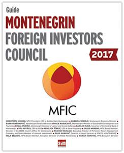 MFIC-2017